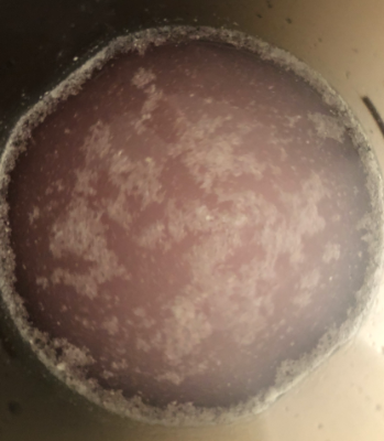 シェイク後のマイプロテインのEAA「ピンクグレープフルーツ」味