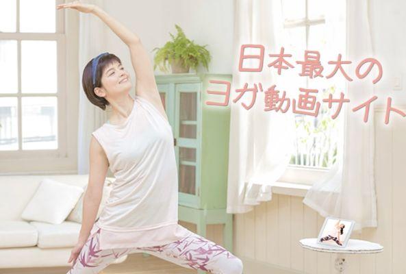 Yogalog関連画像